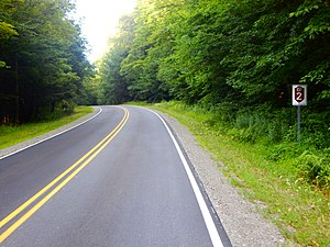 Allegany State Park - ASP Route 2 in the Red House Area