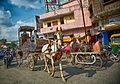 A Horse-Drawn Cart of a Different Color (2) (10875973345).jpg