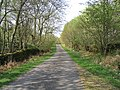 A country road at Holmhead - geograph.org.uk - 419191.jpg