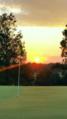 A golf sunset .png