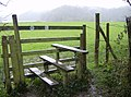 A stile with style - geograph.org.uk - 357476.jpg