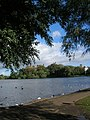 A view across Linlithgow Loch - geograph.org.uk - 416923.jpg