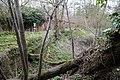 Abandoned mill at Tilty, Essex, England, 10 - overgrown mill race.jpg
