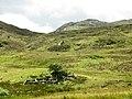 Abandoned sheepfold below the col - geograph.org.uk - 733552.jpg