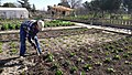 Actividades medio ambientales para el otoño madrileño (02).jpg