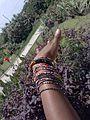African Bangles.jpg