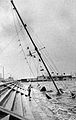 Aftermath of Hurricane Allen, 1980 - Corpus Chrisit.jpg