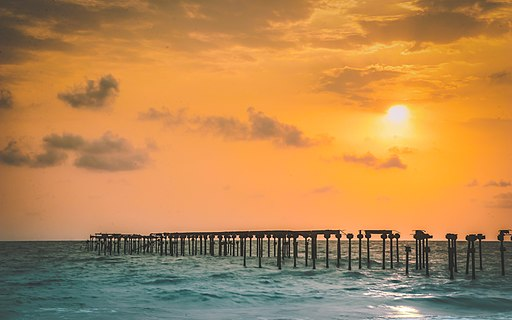 Alleppey beach, Sea bridge