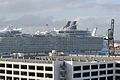Allure of the Seas (8616760806).jpg