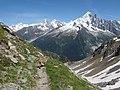 Alpine Ibex (Bouquetin) @ Path from L'Index to Col de la Gliere @ Hike to Lacs des Chéserys, Lac Blanc, Lac Cornu & Lacs Noirs @ Chamonix (15361152412).jpg