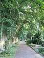 Alte Linden auf dem Friedhof Höhenweg - Eschwege - panoramio.jpg