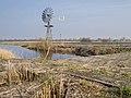 Amerikaanse windmolen bij de Wolwarren.jpg