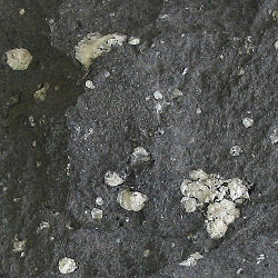 definition of andesite