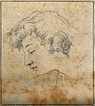 An 'ideal head' shown to have slight idiosyncrasies in physi Wellcome V0009087EBR.jpg