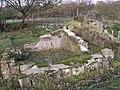 Ancient Remains - geograph.org.uk - 1582468.jpg