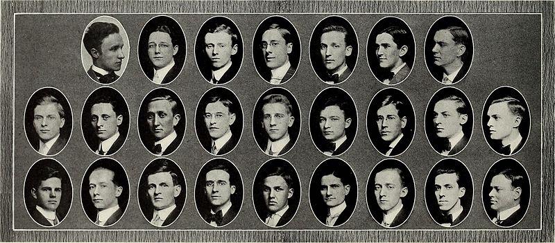 File:Arbutus (1910) (14778544681).jpg