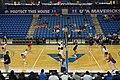 Arkansas State vs. UT Arlington volleyball 2019 37 (in-match action).jpg