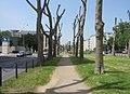 Augustaanlage - Mannheim - geo.hlipp.de - 3466.jpg