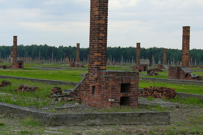 File:Aushwitz- where hundreds of barns stood.JPG