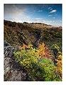 Autumn Colours (230944871).jpeg
