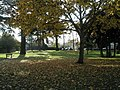 Autumn leaves in Cornwell Road - geograph.org.uk - 603800.jpg