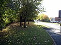 Autumn tints on Vernon Way - geograph.org.uk - 1546475.jpg
