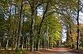 Autumnviewa at 8 November at Park Rozendaal - panoramio.jpg