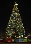 Aviano lights holiday tree during annual ceremony 151201-F-XD389-080.jpg