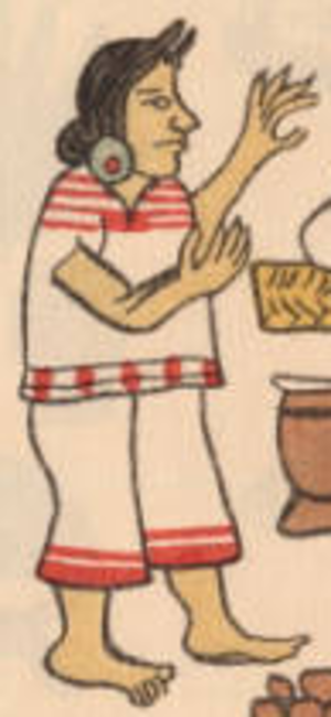 Aztec clothing - This woman is wearing a skirt, a blouse and an ear plug.