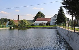 Bělá (PH), common pond.jpg