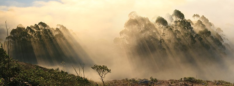 File:Back-scattering crepuscular rays panorama 1.jpg