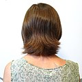 Back Pre-haircut (4805695469).jpg