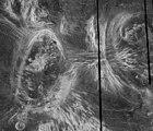 Coronae, kuten Venuksen Fortunan alueella nähdään