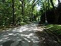 Balade en Forêt de Verrières le 20 août 2017 - 034.jpg