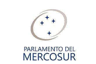 Mercosur Parliament - Image: Bandera Parlamento del Mercosur