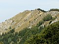 Baraniarky 1270 m.n.m - panoramio.jpg