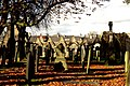 Barnsley Cemetery 4 November 2017 (145).JPG