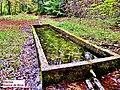 Bassin de la source de Brue.jpg