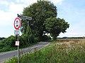 Bedburg-Hau Berk'sche Str. Esskastanien PM19-04.jpg