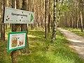 Beelitz - Spargelrundweg (Asparagus Circular Way) - geo.hlipp.de - 39259.jpg