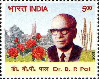 Benjamin Peary Pal - Image: Benjamin Peary Pal 2008 stamp of India