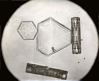 Snowflake - Wilson Bentley micrograph showing two classes of snowflake, plate and column. Missing is an example of a needle.