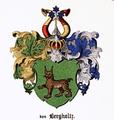 Bergholtz CoA.png