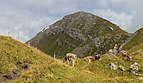 Bergtocht van Alp Farur (1940 meter) via Stelli (2383 meter) naar Gürgaletsch (2560 meter) 011.jpg
