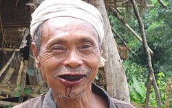 definition of betel