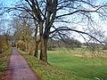 Biosphärenreservat Mittel-Elbe - panoramio (5).jpg