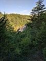 Blackwater Falls of Blackwater Falls State Park 03.jpg