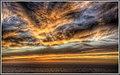 Blazing Big Sur (126038287).jpeg