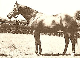 Blenheim (horse) British Thoroughbred racehorse