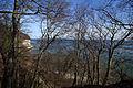 Blick durch Bäume am Gakower Hochufer (Sassnitz, Rügen) 2.jpg